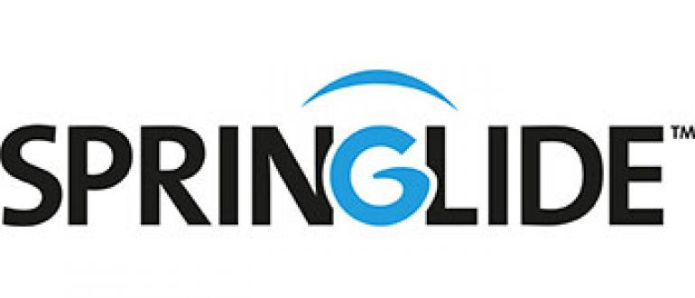 Springlide Energised Bearings